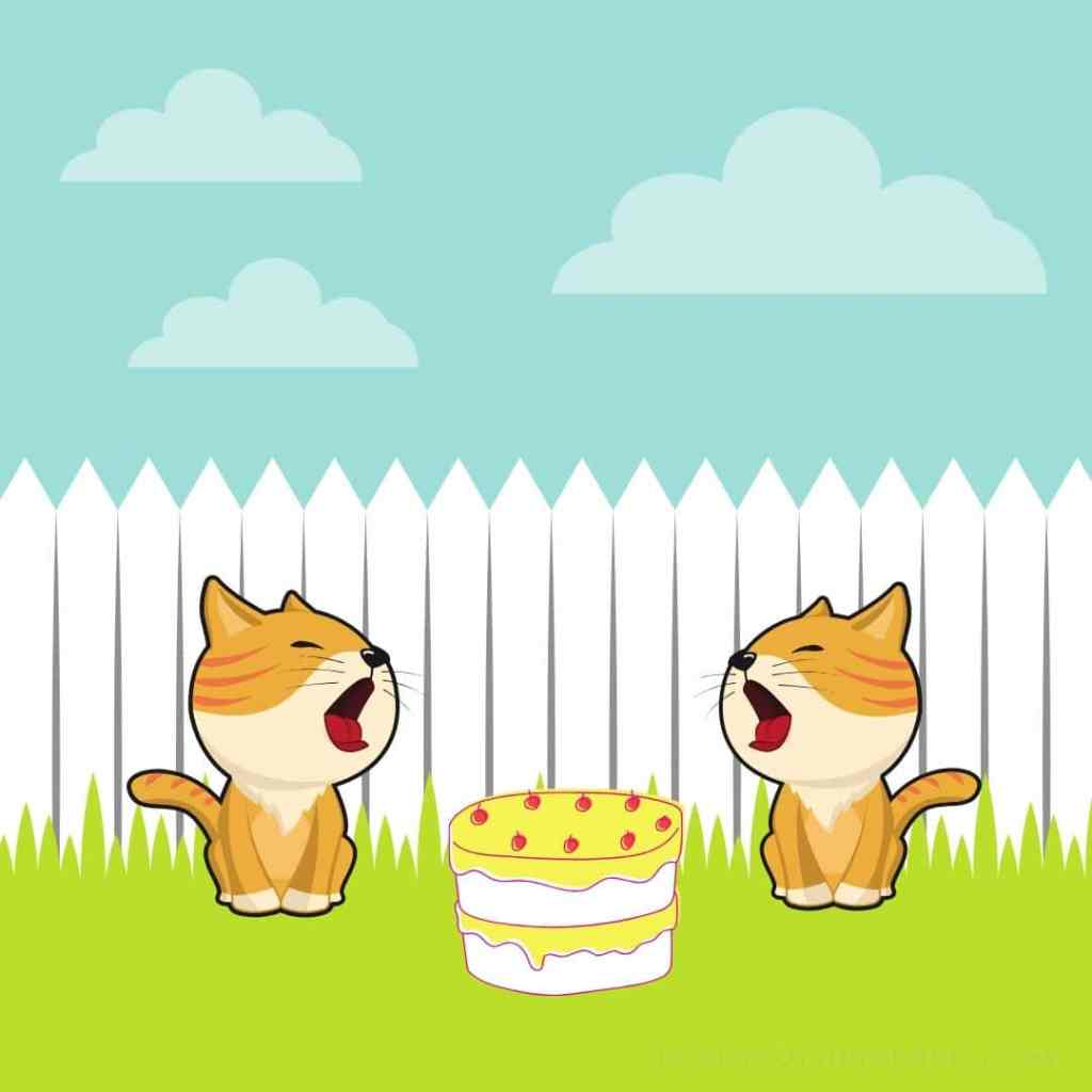 two cats and a monkey story cake argument