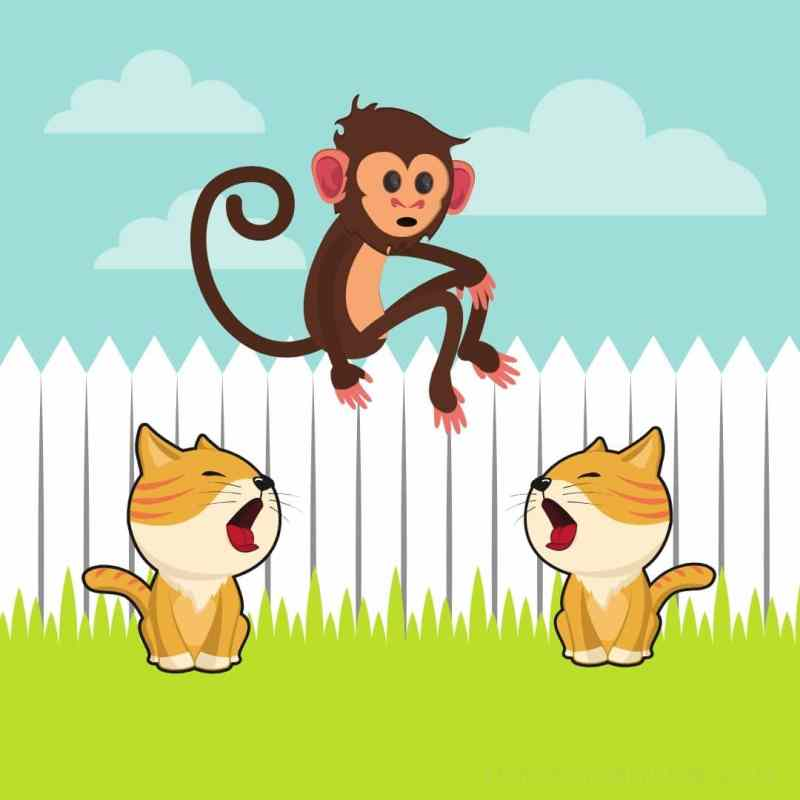 two cats and a monkey story