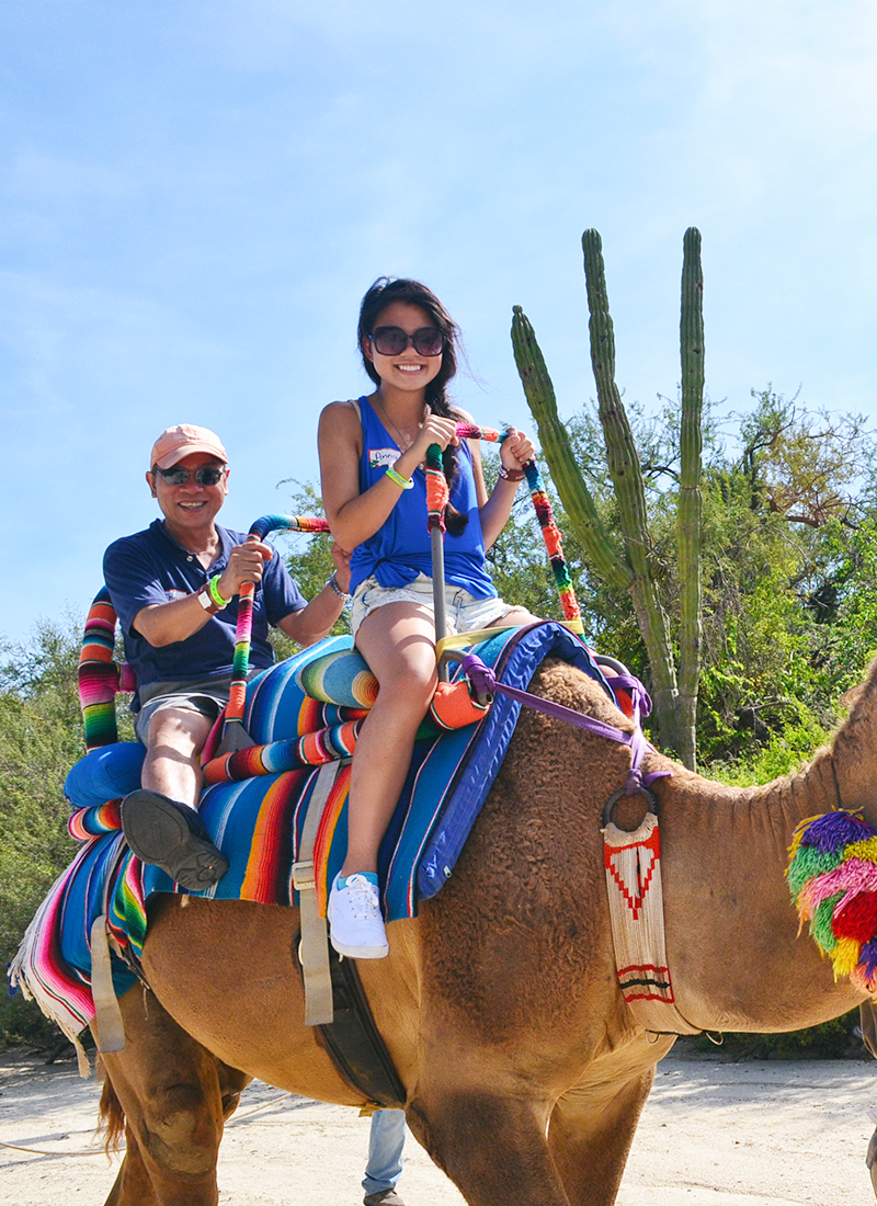 Outfit of the Day – Camel Rides in Cabo