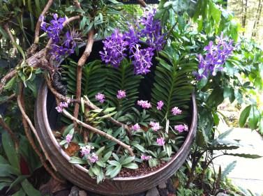 The Botanic Gardens, Singapore