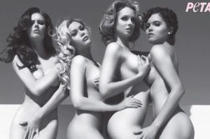 Miss USA winners get totally naked for charity