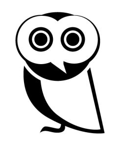 "The All Seeing Owl : ""Bully a Bully"""