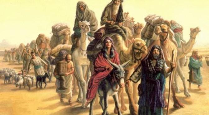 Chamor – Donkey By Rabbi Dr. Hillel ben David (Greg Killian)
