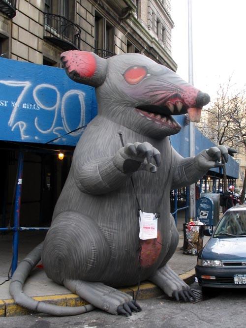 union-rat.jpg
