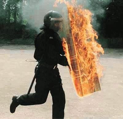 flameshield.jpg