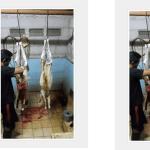 daftar paket harga kambing aqiqah bekasi timur