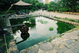 Pond Photo copyright Rebecca Lau
