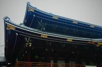 Buddhist Temple Roof Photo copyright Rebecca Lau