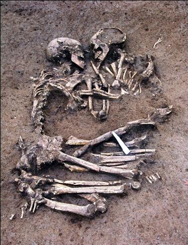 skeleton_zoom