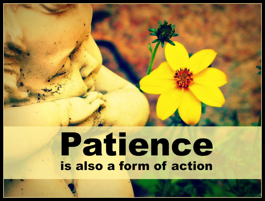 #quote #patience #rodin