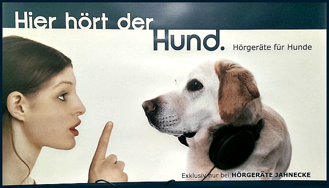 #dog #kitsch #hearing be kitschig blog