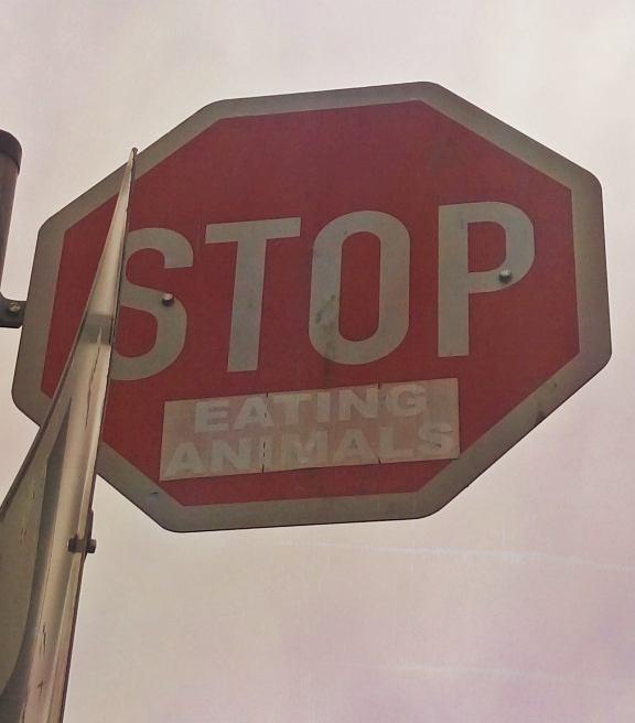 Stop Eating Animals #stop #sign #govegan be kitschig blog