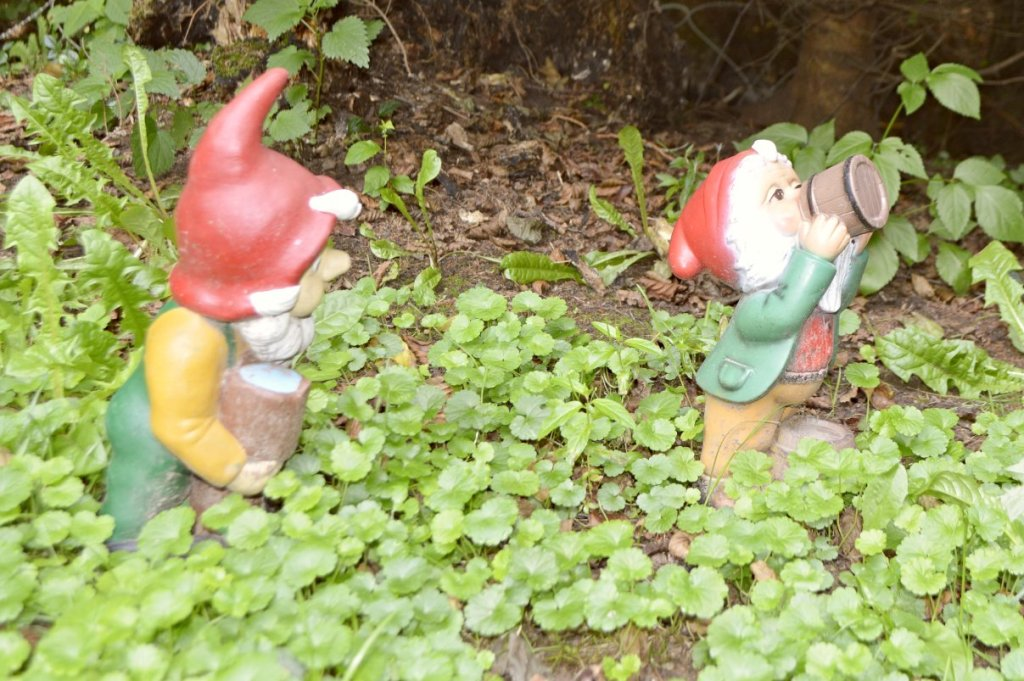 Garden Gnome Park Trusetal Thuringia travel kitschy bekitschig.blog Gnome drinking beer