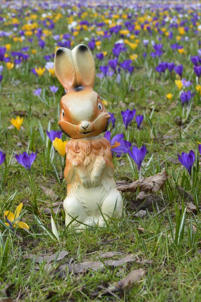 Ostergrüße Be Kitschig Blog -- Berlin süßer retro Osterhase auf der Wiese mit Blumen