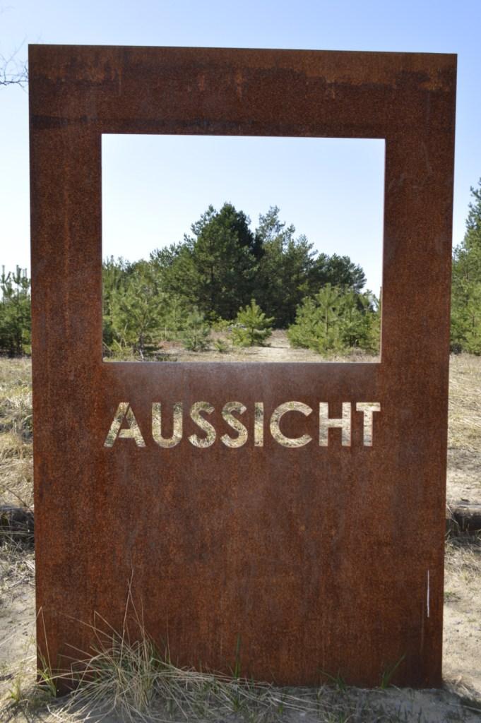 Lieberose Heath & Desert - old military Ground in Brandenburg, Germany succession forest