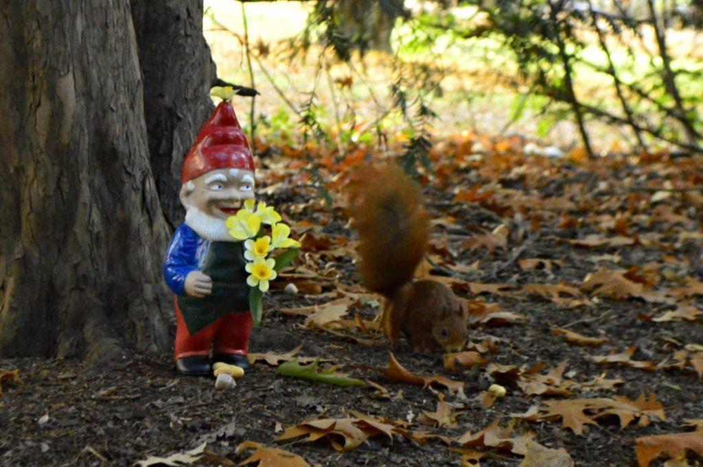 gartenzwerg mit Eichhörnchen - be kitschig blog
