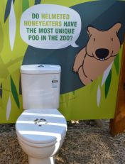 #Melbourne Zoo