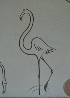 #Tierpark #Flamingo