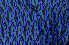 Kamdy Set - Deep Blue abstract