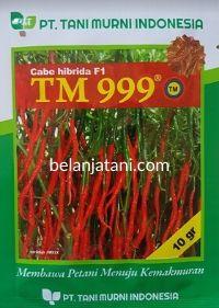 Cabe TM 999, Cabe TM 999, Cabe TM 999 F1, Cabai TM 999, Cabe Keriting TM 999, Cabai Keriting TM 999, Cabe Merah Keriting TM 999, Harga Murah, Belanja Tani, Tani Murni, TM Seeds