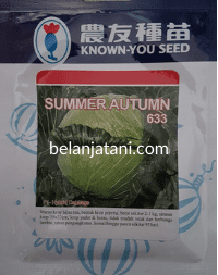 Summer Autumn, Bibit Kol Summer Autumn, Kol Summer Autumn, Kubis Summer Autumn, Benih Kol Summer Autumn, Jual Kol Summer Autumn, Summer Autumn Terbaru, Known You Seed, KYS, Known You Seed Indonesia, Belanja Tani