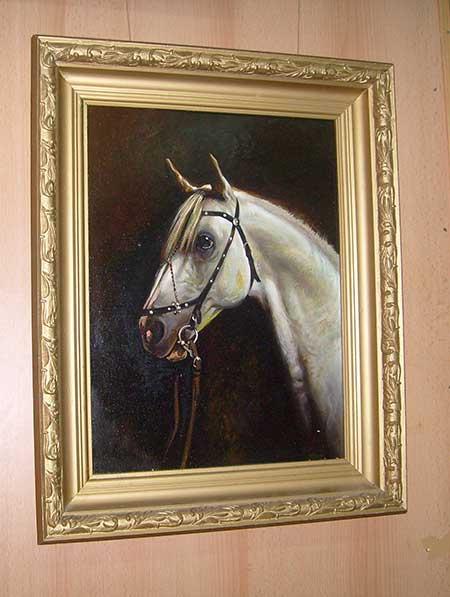 Голова-коня