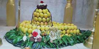 Mango aaras kapilnath