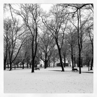 snow...снег...