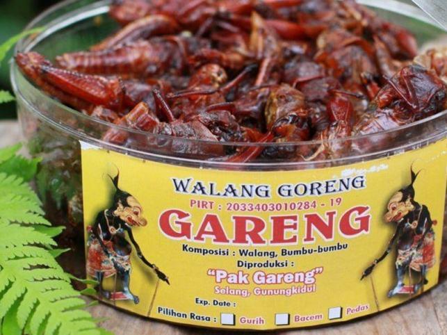 makanan khas jogja walang goreng