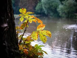 Fast schon Herbst