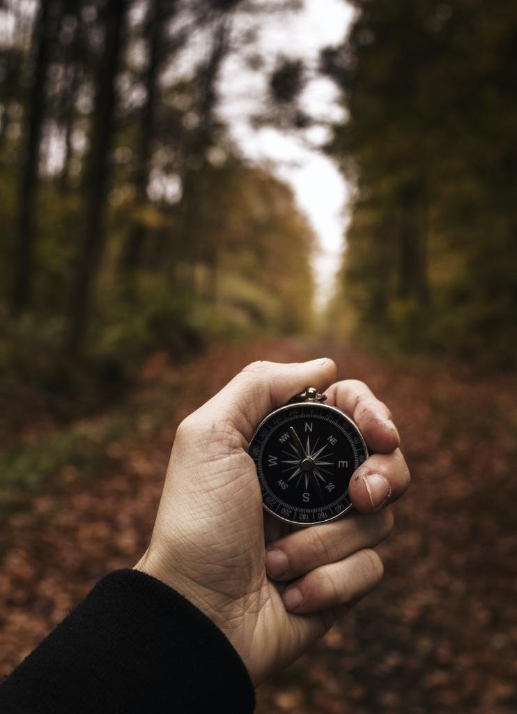 compass held in hand in forest
