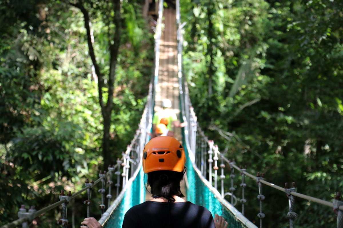 mainland-15-min-by-plane-or-a-little-over-an-hour-by-ferry-to-explore-belizes-tropical-rainforests-with-a-ziplining-tour-or-cave-tubing-tour