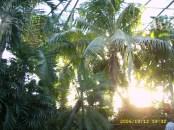 Índico Tropical (Oceanário de Lisboa)