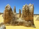 The Pinnacles (Nambung National Park)