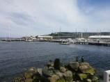 Kings Pier Marina