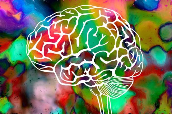 Tratamento para dependentes de alucinógenos em clinica de recuperação em sp
