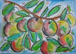 DAY 3 Apples