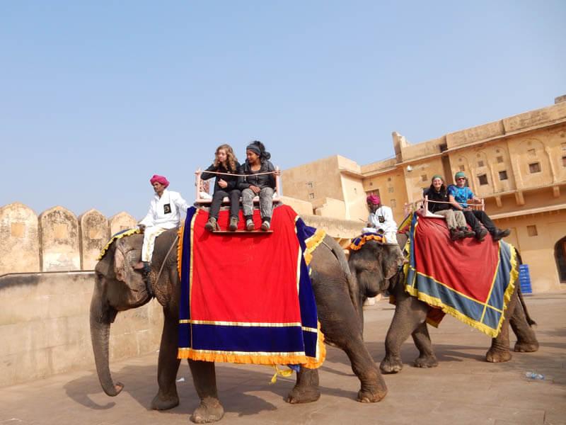 Eloise elefánton lovagol
