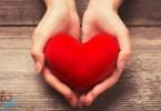 szív egy kézben