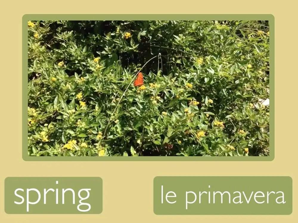 Spring: Italin