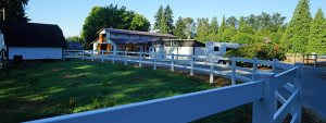 Bellamy Brook Stables Maple Ridge, BC has quality vinyl fencing