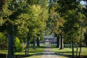 A Toast to Oxmoor Estate