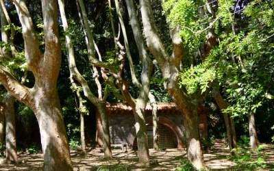 Es presenta telemàticament el projecte del Parc del Torrent de la Bonaigua