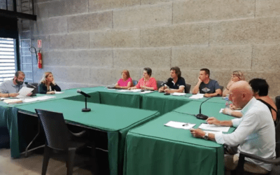 [VÍDEO] Ple de la Junta de Veïns ordinària del 15 de juliol de 2019