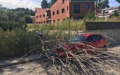 El vent fa caure un arbre sobre un cotxe a Bellaterra