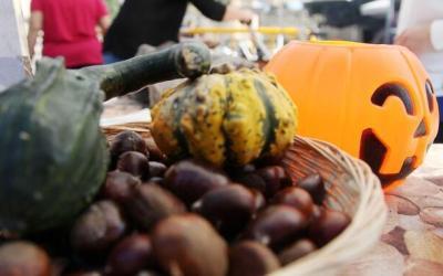 La Castanyada i Halloween, dues tradicions que conviuen arreu de Catalunya