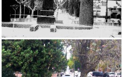 Dos imatges de Bellaterra en 56 anys
