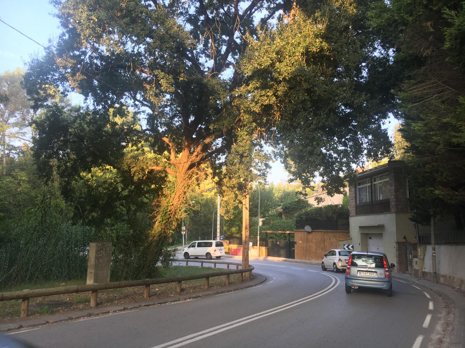 Corba de l'avinguda Bartomeu, a la BV-1414, on es faran els treballs | Redacció