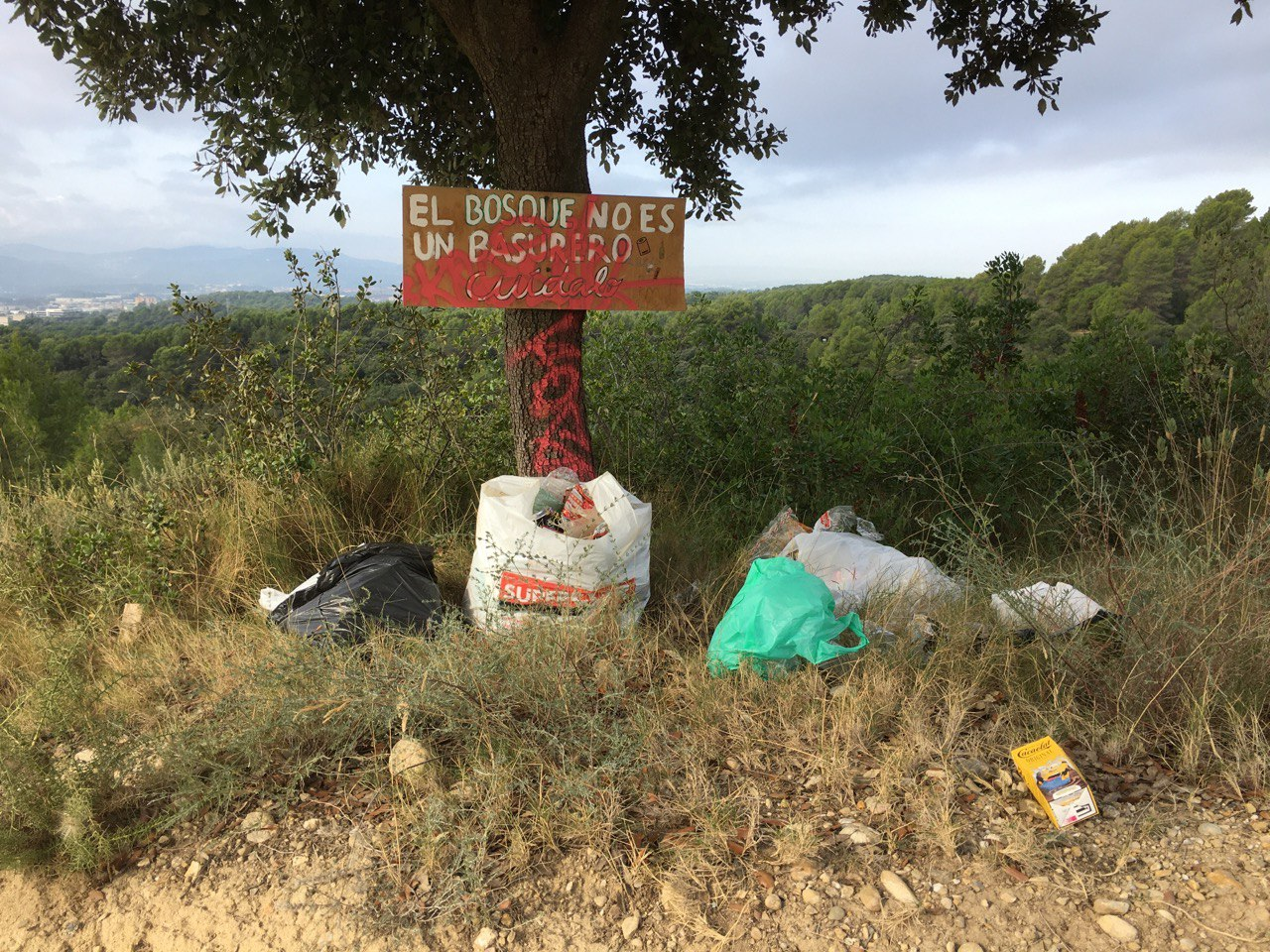 Imatge de la brossa a la zona dels Pous | Mireia Pérez