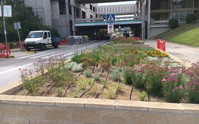 Part de l'eix central de la Universitat Autònoma es convertirà en una zona peatonal